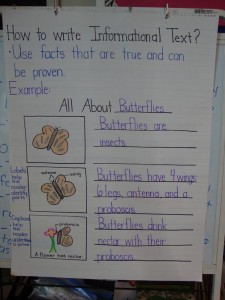 Butterfly Informational Text